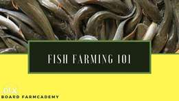 Free Ebook and Lecture on Fish Farming