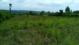 Plot for sale in mosocho