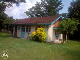 2 bedrooms own compound house to let - Milimani, Kisumu