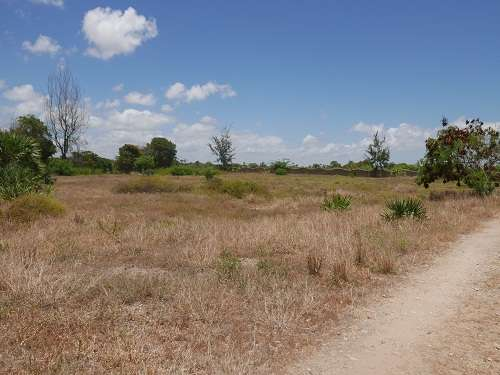 Land for Sale in Malindi. Malindi - image 3