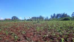 Thika 100x100 Plot for Sale In Ngoingwa