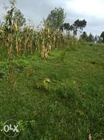 65 * 220 piece of land at Mosocho,500m from Riotero primary school