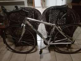 Fuji Ace bicycles for sales