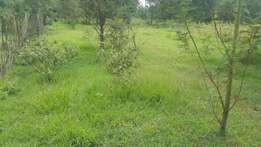 10 acres at kapseret quarry mlango with title