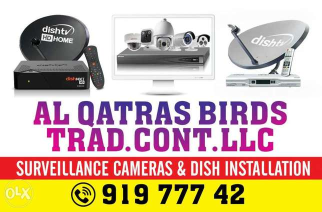 Dish and CCTV services