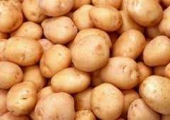 Potatoes Shangi 110kgs BAG at kshs 3,500 and 220kgs BAG at kshs 4,600.
