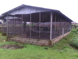 Poultry with two rooms for rent