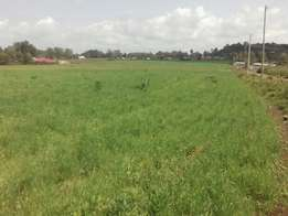 Kamkunji land 5 acres very good land 5m