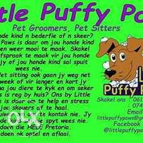 Pet Groomers and Pet Sitters