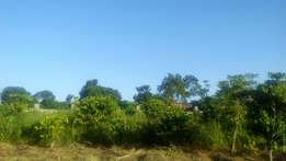 Half acre for sale in Kasangati Kireka at 140m with ready title