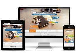 Professional Web design, Seo Optimized & Responsive website design