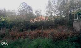 This is a residential 1/8 acre in Ongata Rongai.