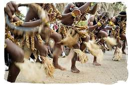 Indlamu Group-Zulu Traditional Dance Group for Functions