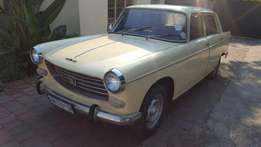 1976 Peugeot 404 on the road! VERY CHEAP!