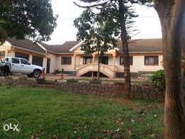 Standalone house for rent bukoto kisasi road 1800$