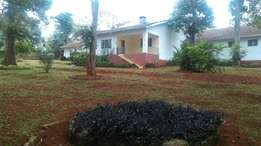 A four bedroom house to let in loresho
