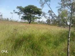 1acre Land for Sale Kabarak (neighbouring Komen Farm)