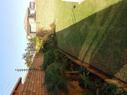 House in JANSENPARK for rent!!!