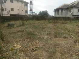 Well fence 2 plots of land for sale in Mopol 19
