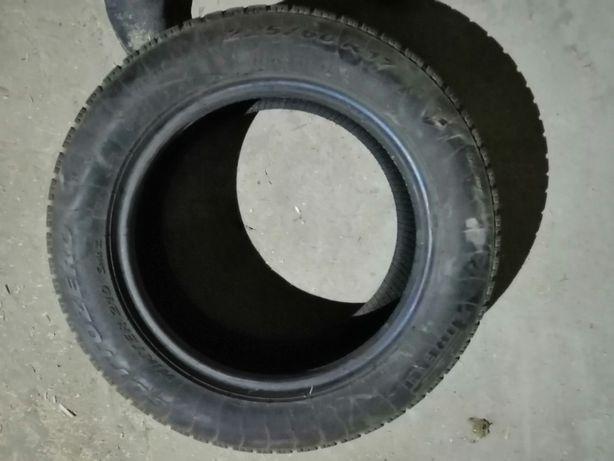 Opony Zimowe Pirelli Sottozero 17 22560 Chełm Olxpl