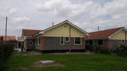 New Bungalow to let