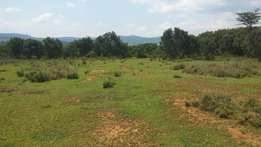 5 acres in Nanyuki with great scenery of mountains at 700k per acre.