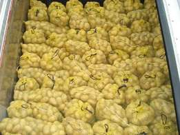 Fresh and Top Quality Potatoes