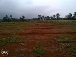 promo!promo!promo! cheap land for sale at ota, canaan land area