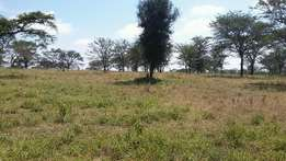 15Acres Kiserian Pipeline Rd and 4km from Emasho Lodge asking 1.5M