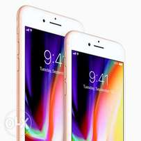 iPhone 8 256 GB with 13 Months warranty Brand New Sealed