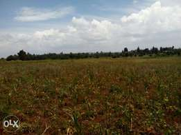 5 acres for sale in thigio/ndeiya