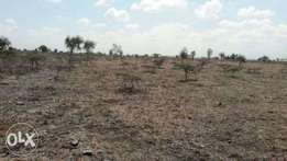 Prime 5 acres for sale in Isinya