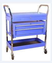 Professional Tool Trolley with 2 drawers