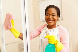 expert home maid cleaners