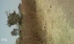 Land for sale in Mabuchi for Mix-Use 1.3hec