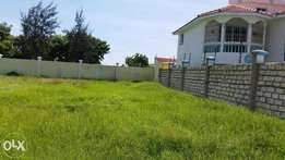 1/2 plot with a perimeter wall