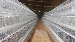 Poultry tech cages.