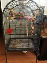 Big Bird Cage - everything included (toys/perches/bowls, etc)