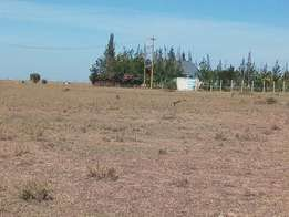 50 by 100 plots for sale in Athiriver at 350k