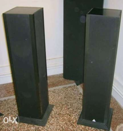 Triangle Icare speakers