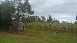 1/4 plot annex/buzeki 70metres from tarmac