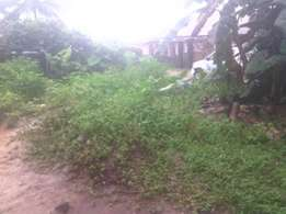 Land for sale at afordable price Ekwere Nsukara