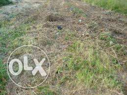 Land for sale at developing area of Shelter Afrique extension, Uyo