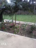 lnstant lawn and sprinkler lnstollation. compost.topsoil