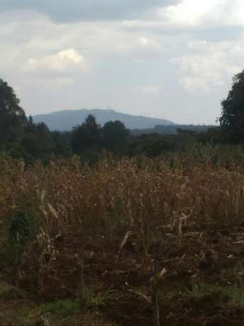 Land for sale Thogoto - image 1