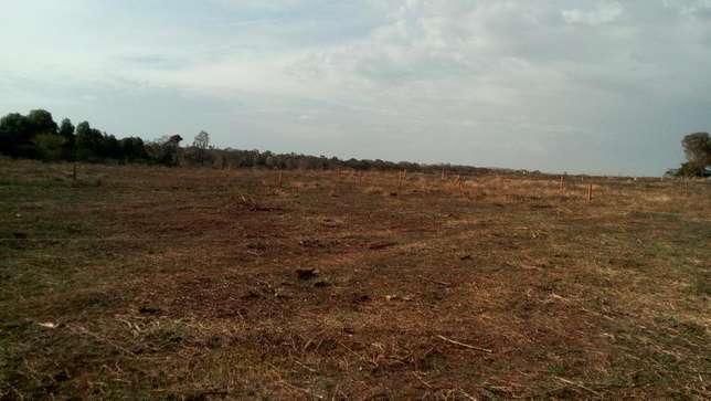 100 by 100 plots at Madiba Garden Nyaribo - image 3
