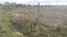 1/4 acre for sale in syokimau near main road