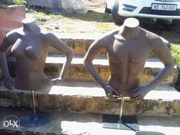 Torso female and male mannequins for sale