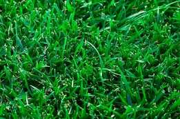 Instant Lawn installation and Garden Services Available