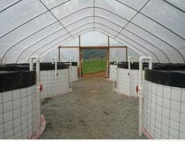 Green house fish farming gives the ability to raise fish quiker